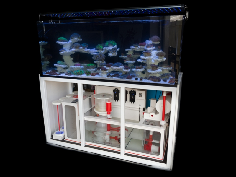 AP-Reeftank Exklusiv 216 Ltr, 60x60x60 cm Poolbecken mit Unterschrank, Royal Dreambox mit Technik