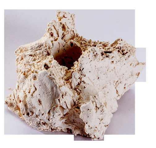 ARKA Ablegersteine groß natur, 100er