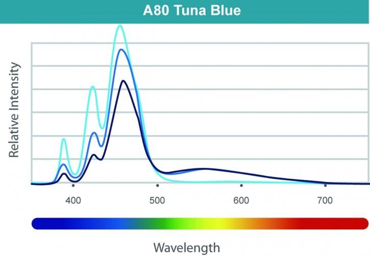 Kessil LED A80 Tuna Blue