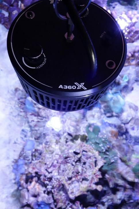 Kessil  LED A360X Tuna Blue